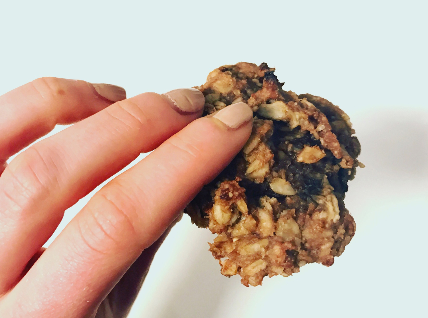 Chocolate Banana Oat Cookies