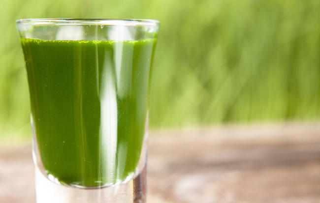 I Took Wheatgrass Shots Every Morning For Two Weeks. Here's What Happened.